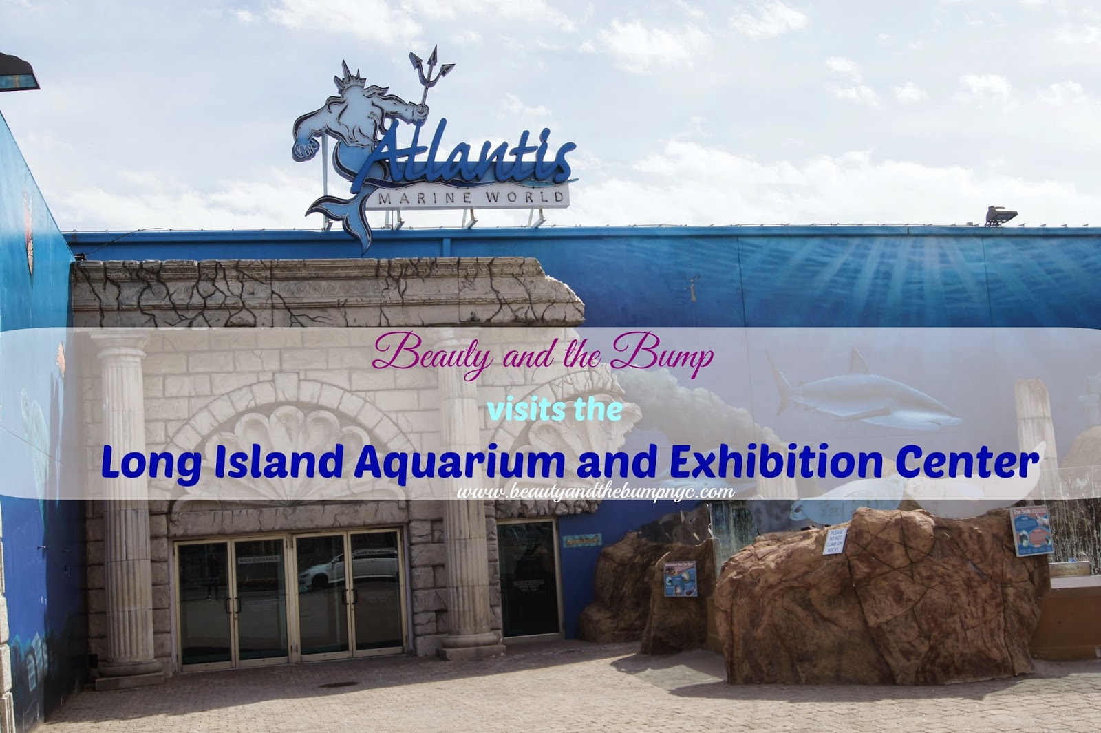 How To Get To Long Island Aquarium